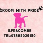 Groom with Pride on VisitIlfracombe
